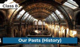 Class8_History